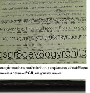 PCR หรือ ลูกยาง